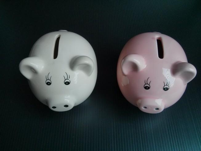 Cute Piggies Money Bank - White