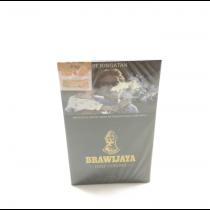 Brawijaya Half Corona 5